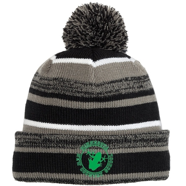 MNCS Winter Cap